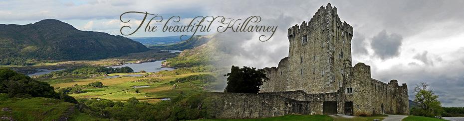 Banner pagina curso familias killarney